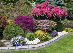 Hobbygärtner und Blumenbeete