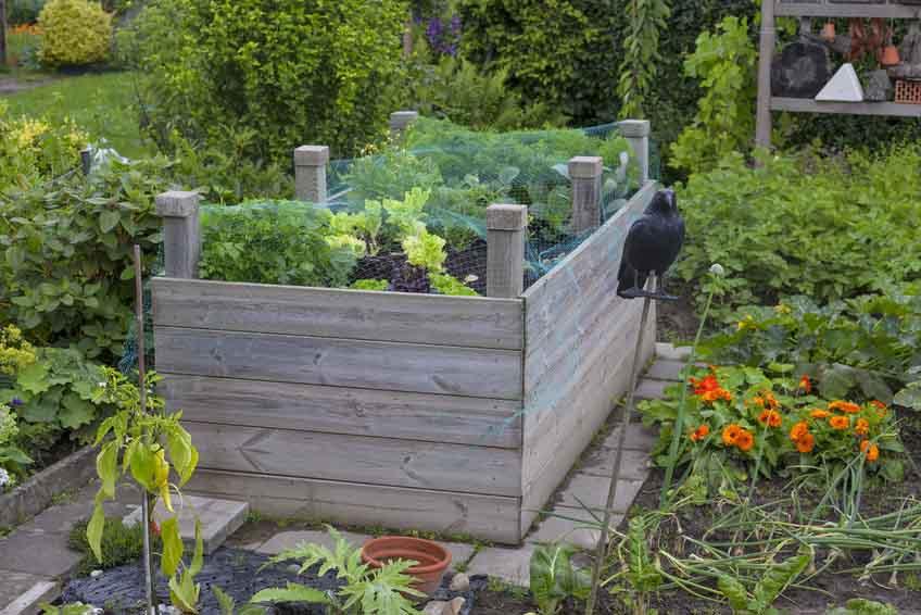 Mit Hochbeet Einen Garten Gestalten Gartenfrosch Ratgeber