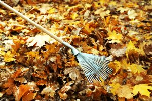 Herbst Gartenarbeit