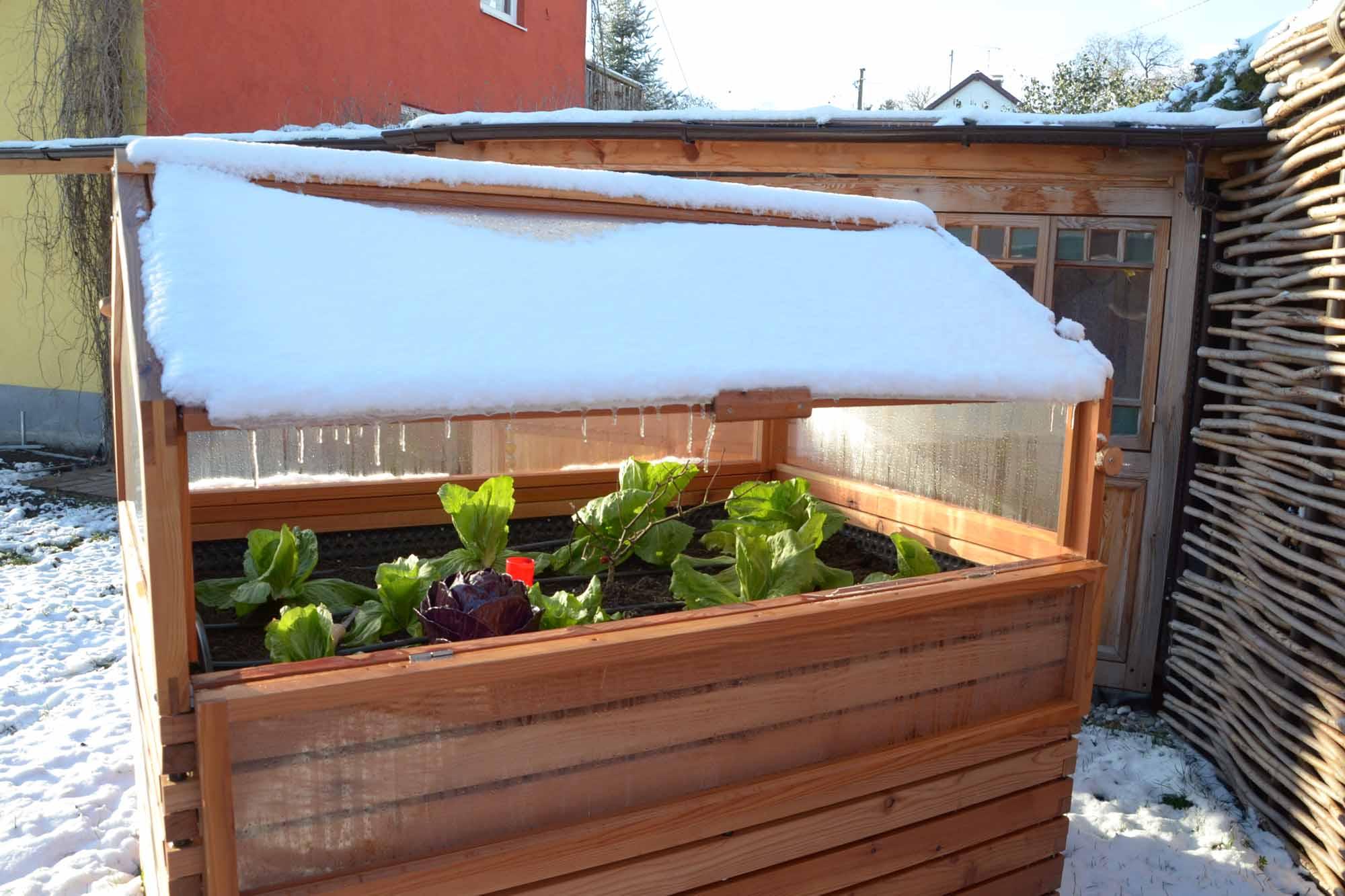 Gartenarbeiten Im Marz Beet Und Gemusegarten Vorbereiten