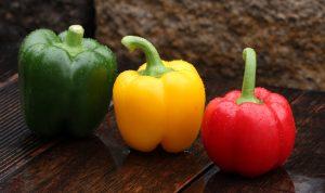 Paprika – das Trendgemüse für Töpfe und Beete