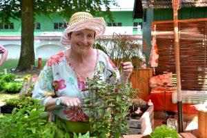 Arbeiten im Mai – Tipps fürs Beet & Hochbeet bepflanzen