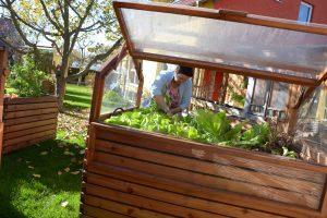 Hochbeet mit Treibhausaufsatz von Gartenfrosch