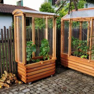 Tomaten-Tram Pflanzkasten mit Treibhaus
