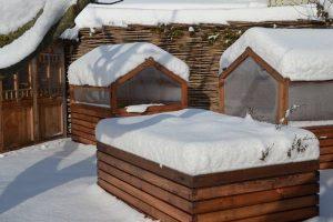 hochbeet-fruehbeet-winter-schnee