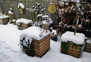 Pflanzkübel im Schnee