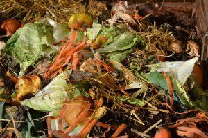 Komposthaufen mit frischen Gemüseresten