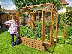 Kleingewächshaus im Garten mit jungen Tomaten