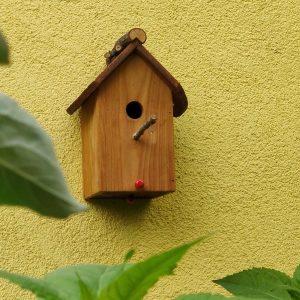 Vogelhaus Nistkasten für Hohlenbrüter